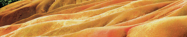 Magen Milz Qigong
